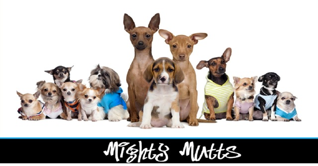 mighty-mutts